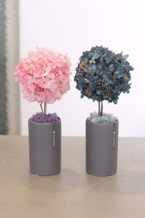 preserved flowers topiary  #preservedflower #topiar #flowers #flowerideas