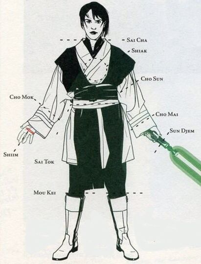 10 best Jedi Fighting Styles images on Pinterest | Lightsaber ...