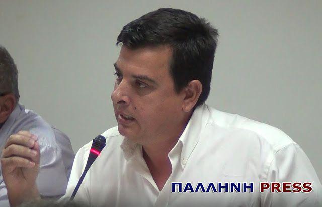 Παλλήνη Press | Ανθούσα-Γέρακας-Παλλήνη | Το πρώτο blog της πόλης !!!: Καρατζάς: Εμείς ορίζουμε τις τύχες του τόπου μας κ...