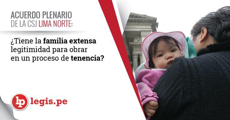 Acuerdo Plenario de la CSJ Lima Norte: ¿Tiene la familia extensa legitimidad para obrar en un proceso de tenencia?