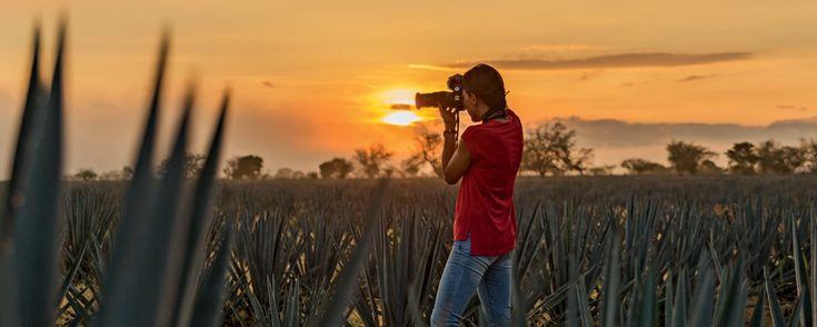 Mira las fotografías finalistas del Reto: La Mejor Foto de México 2017. Llegó la hora de elegir a los ganadores del Reto: La Mejor Foto de México. Mira las fotografías finalistas de este concurso que busca resaltar la belleza de México.