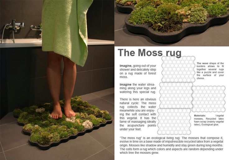 The moss rug