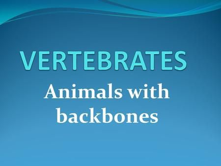 Animals with backbones>