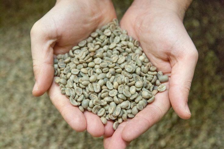torréfaction du café | Brûlerie Caron, la torréfaction du café élevée au rang d'Art