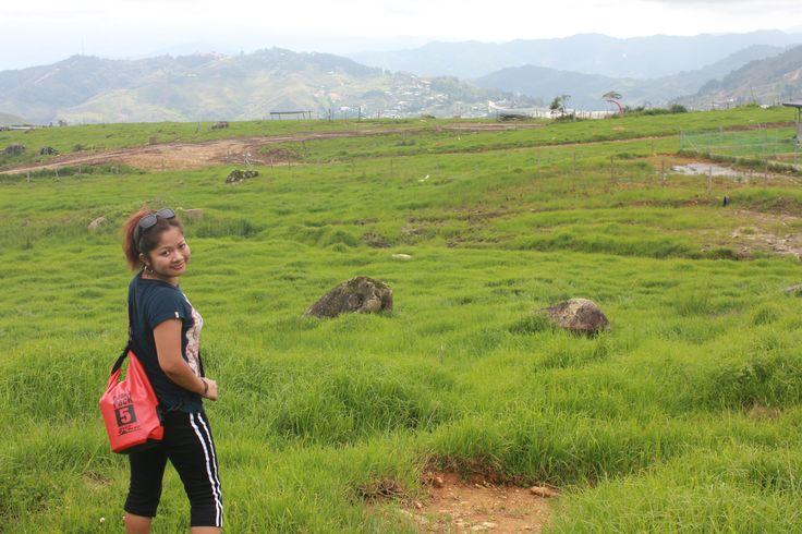 Beautiful scenic green in Kundasang