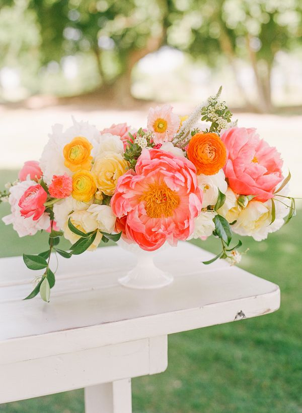 coral charm peony centerpiece | Katie Stoops