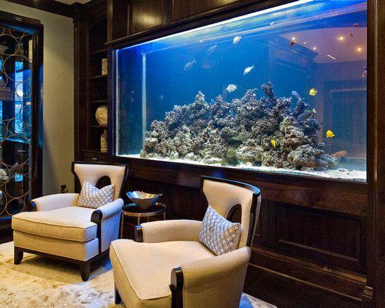 Fish Tank! Part 34