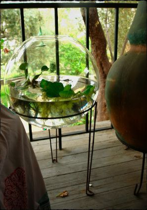 A large glass bowl and a plant stand gets you this great little water garden for your patio/porch.