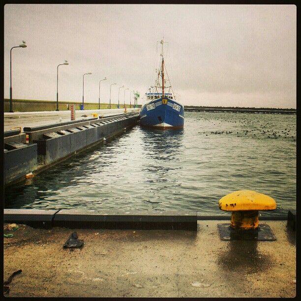 Port rybacki Hel, Koga, kuter rybacki, Photo by marynistyka
