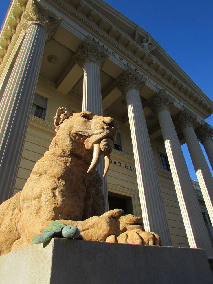 Museo de Ciencias Naturales de La Plata em La Plata, Buenos Aires. Peudes visitar en martes a domingo a 10 a 18. Ofrece visitas guiadas gratuitas.