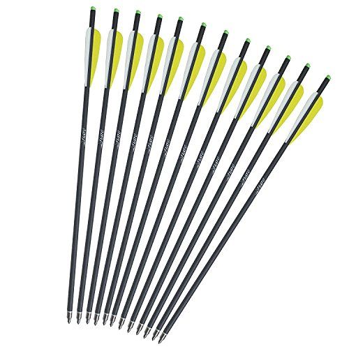 Misayar Carbon crossbow bolts are Produced With A More Consistent Wall Thickness Composite Carbon Shafts for More Durability. The arrow Matched With A 125 gr Point with 13.76 Grains Per Inch shaft and...