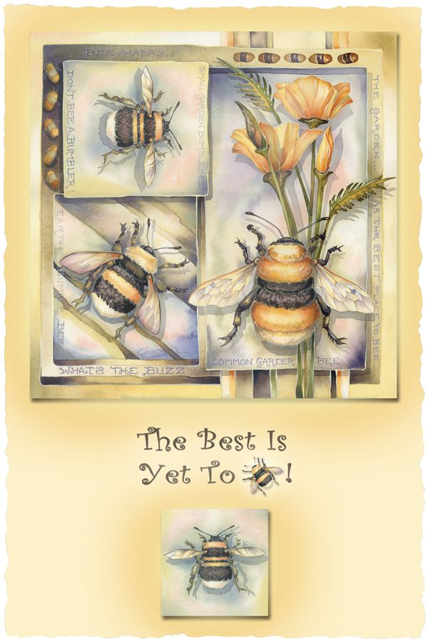 Bergsma Gallery Press::Paintings::Insects & Amphibians::Misc. Insects::The Best Is Yet To Bee - Prints