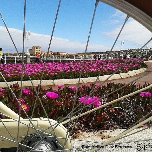 """En abril, """"30 DÍAS EN BICI"""" en Gijón. Vete engrasando la cadena. De carretera, de montaña, fixie, tándem, con ruedinas a los lados, grande, pequeña, cara, barata, nueva, vieja... Sea como sea, tu bici será la reina del asfalto gijonés del 1 al 30 de abril. #Bicis #Bikes #Ciclistas #Bikers #Cyclists #Gijón #Xixón #Asturias #Asturies #AsturiasConSal #NorthernSpainWithZest #Turismo #Tourism"""