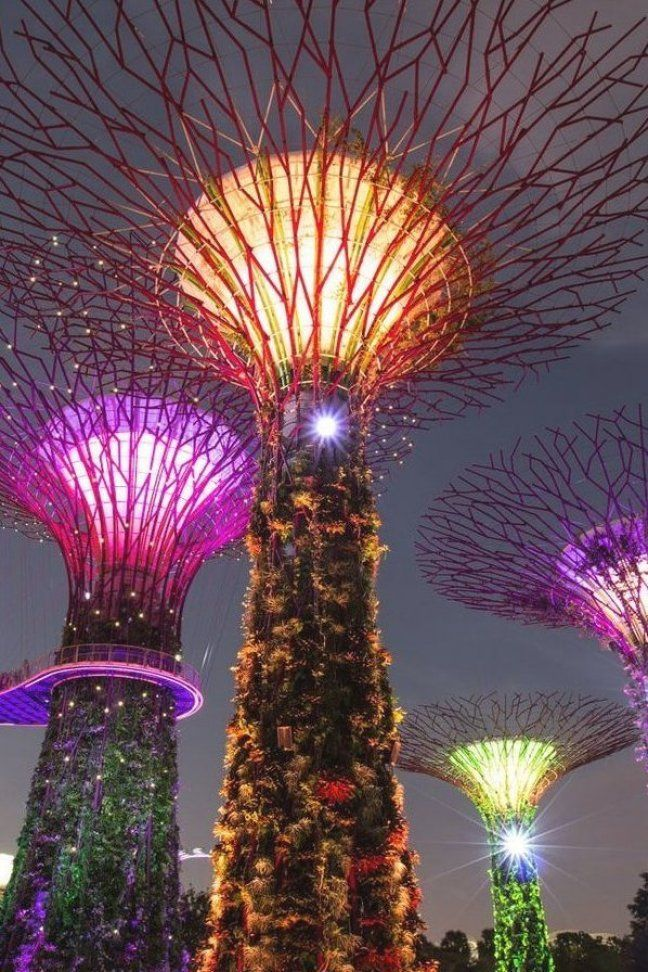 7db86987f870510e7a8185154e7c15ab - Gardens By The Bay Light Show Best View