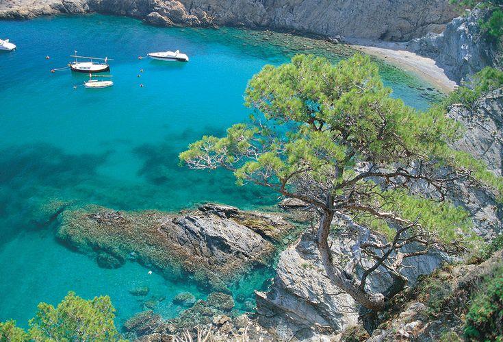 Baie de sa tuna vacances d t pinterest villas for Piscina natural begur