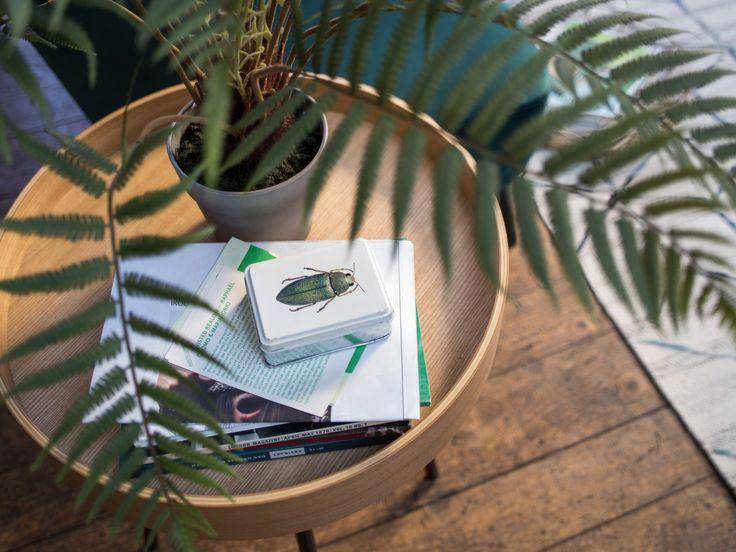 Beistelltisch PAULS & Kunstpflanze MOOD