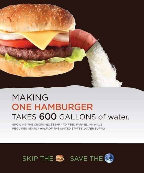 Making ONE hamburger takes 600 GALLONS of Water. SKIP the burger, SAVE the Earth. {Go Vegan}