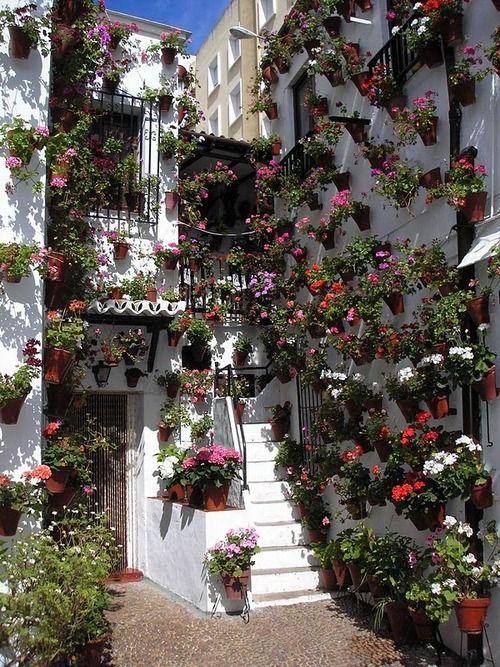 Flowered Patio, Cordoba, Spain