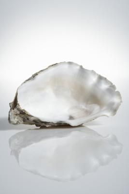 An oyster shell can look a bit rough on the outside, yet its interior resembles a smooth, elegant piece of silk. Once cleaned, you can use oyster shells for decorating, whether you harvested them ...