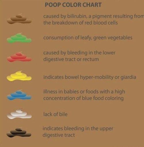 Nursing - Urine And Stool