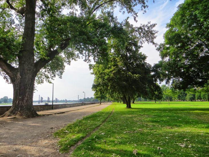 Der Rheinpark Golzheim erstreckt sich vom Stadtteil Pempelfort bis weit in den Stadtteil Golzheim, ca. 2,5 km entlang des rechten Rheinufers. Der 24,1 ha große und weiträumige Park mit seinen zahlreichen Weiden, Pappeln, Birken und Ahornbäumen bietet viel Platz für Erholung, Sport und Spiel. Bei schönem Wetter sind fast zu jeder Tageszeit Fußballspieler, Jogger oder Tennisspieler zu beobachten. Vom hier aus hat der Besucher einen ungehinderten Blick auf das sanft geschwungene Ufer der Rheins…