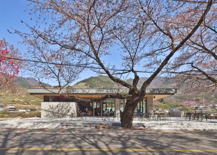 Rooftop bridge connects riverside house and roadside cafe in a South Korean valley