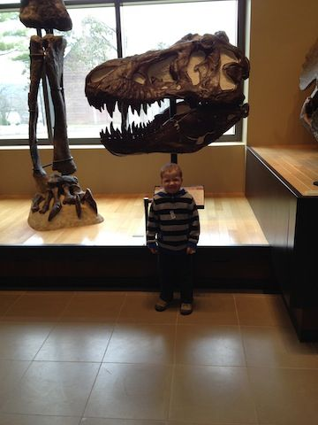 What to do with kids in MA: take a day trip to the Beneski Museum of Natural History at Amherst.