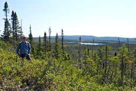 NCC intern Brandon Ward looking out over the peatland (Photo by NCC)