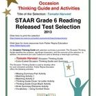 This classroom tested product includes the complete analysis for the STAAR released test poem: Tomato Harvest. It is released as a 6th grade select...