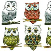 The Four Owls - owls owls owls lots of owl designs