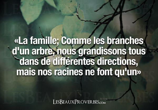 Les Beaux Proverbes – Proverbes, citations et pensées positives » » La famille