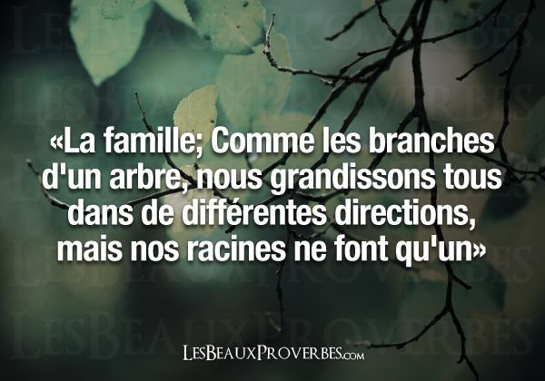 Les Beaux Proverbes – Proverbes, citations et pensées positives ». So true!! Aline ♥ family quotes