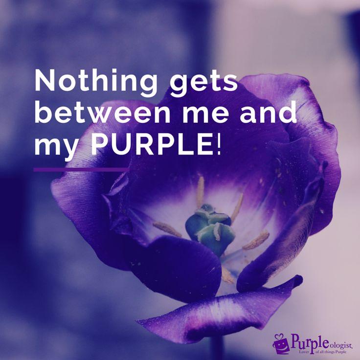 Roses Are Purple - Purpleologist