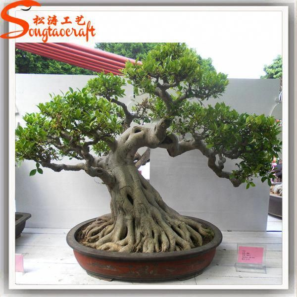 Guangzhou Factory Types Of Large Outdoor Artificial Trees Ficus Microcarpa Bonsai For Sale Japanese Artificial Trees Outdoor Outdoor Topiary Bonsai Tree Types