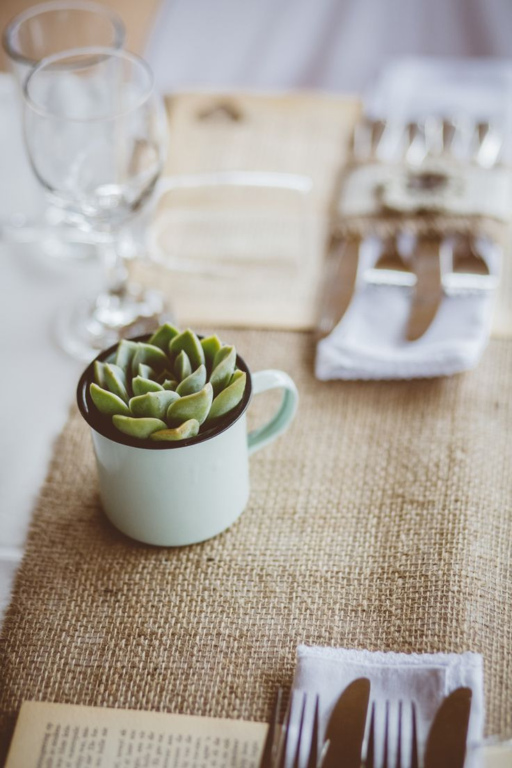 succulent in an enamel mug.How I will sell the enamel mugs at the Christmas show. JP & Anneke_006