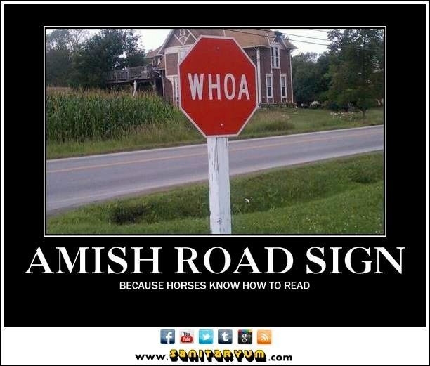 Amish stop sign woah because horses know how to read ...