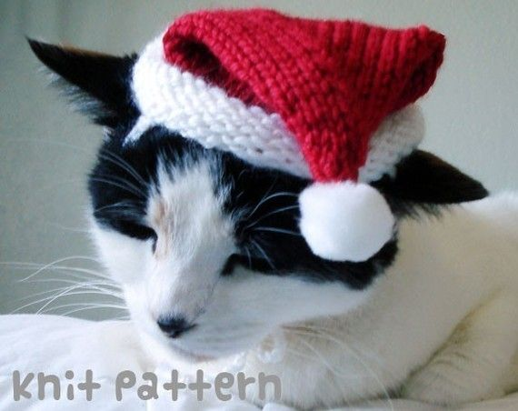 Knitting pattern - santa claus pet hat - cat christmas costume knit amigurumi...
