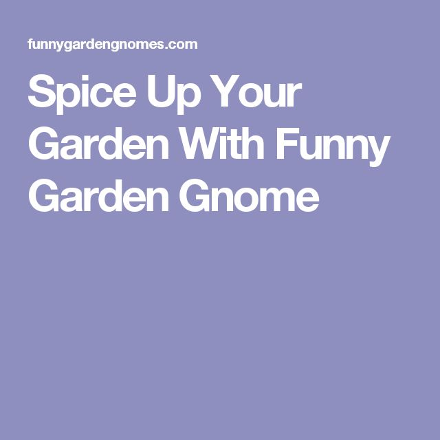 Spice Up Your Garden With Funny Garden Gnome