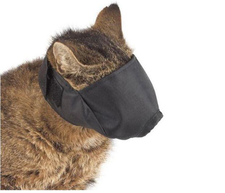 ТОП 10 необычных подарков: 4 место Маска для кота-http://ali.pub/qlap1 Сколько стоит: 200 Р Сколько будет ехать: до 50 дней  Что сказать, когда даришь: Вообще это маска для кота, чтобы не кусался. Но я дарю большого размера, она налезает на человека. Если вокруг будет ад, просто надень маску, и всё будет хорошо.