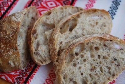 Итальянские Панини (2 варианта: на дрожжах и на закваске) : Хлеб, батоны, багеты, чиабатта