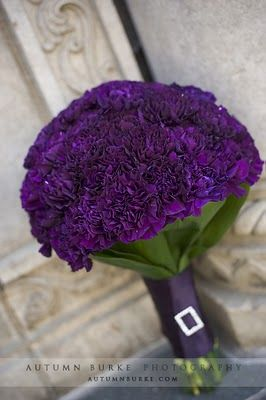 Hate carnations individually... Can't get enough of them in a full bouquet!