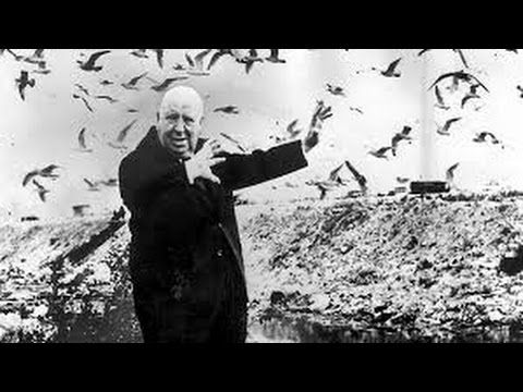 alfred hitchcock madarak online dating
