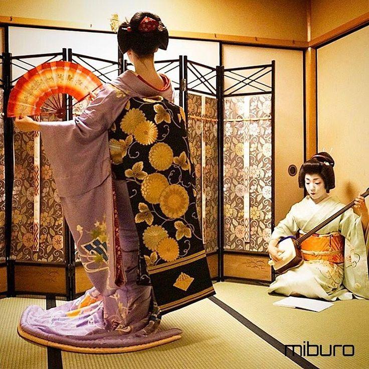 Geiko & Maiko : Photo