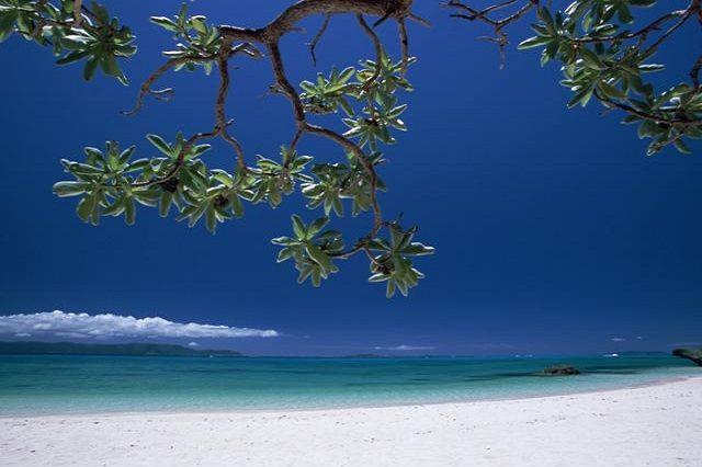那覇から飛行機で約30分!久米島を楽しむホテル&ツアー   たびらい