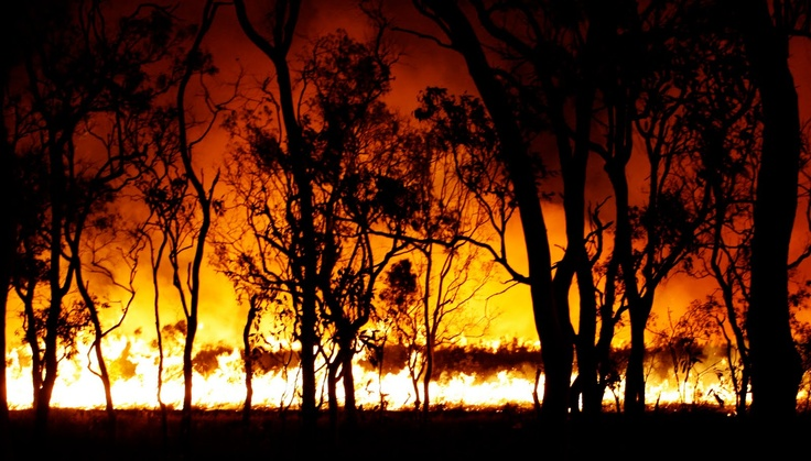 Google Image Result for http://charterstowers.e-village.com.au/wp-content/uploads/2012/12/Bush-Fire-Queensland-charters-towers.jpg