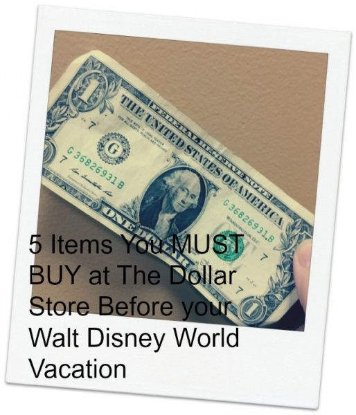 Find out how you can save money by purchasing these five dollar store items BEFORE your next Walt Disney World Resort Trip.