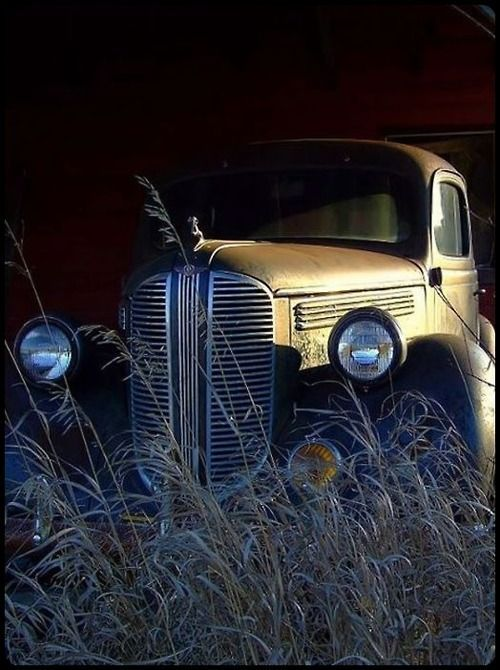 Old Dodge pickup...Re-Pin..Brought to you by #HouseofInsurance in #EugeneOregon