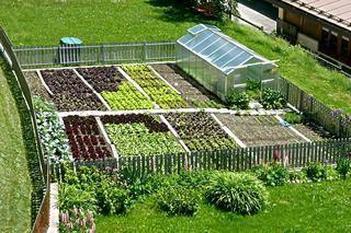 come gestire un orto