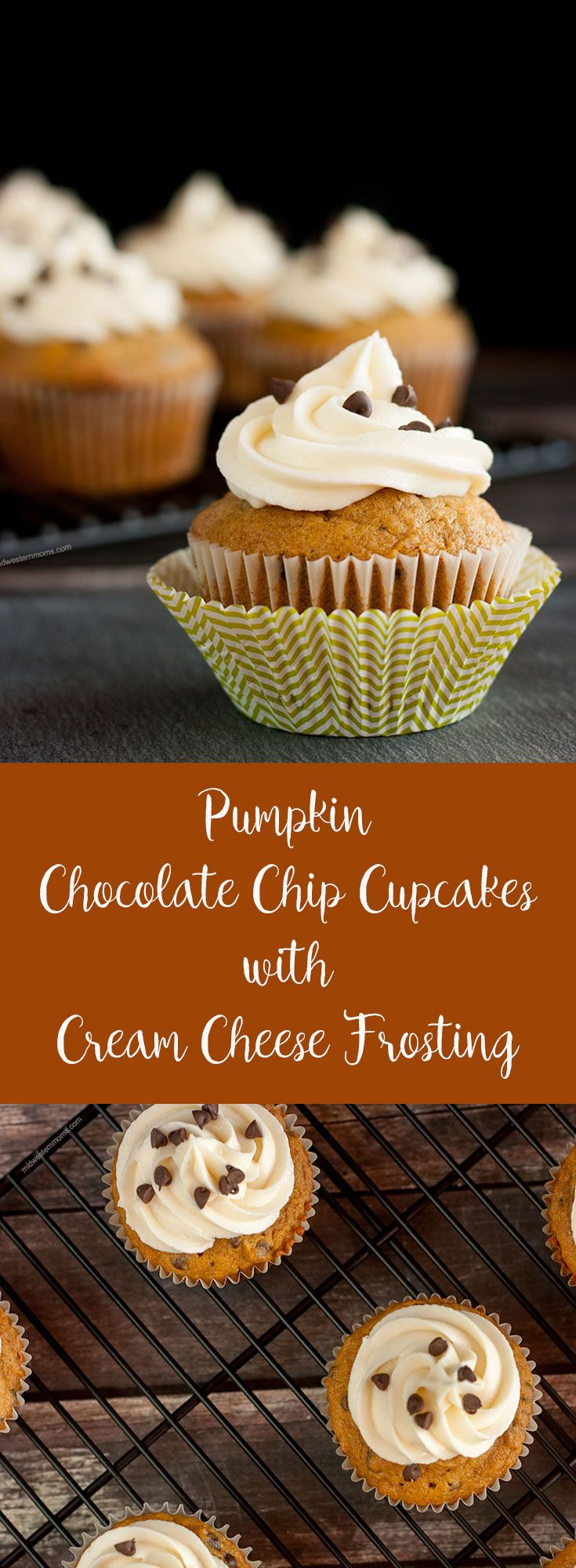 A delicious Fall treat: Pumpkin chocolate chip cupcakes with homemade cream cheese frosting.