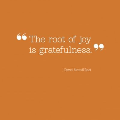"""The root of joy is gratefulness."""
